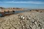 بالصور ... أهوار جنوب العراق تموت عطشاً