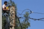 توجهان داخل الحكومة... و'حل جذريّ' لأزمة الكهرباء؟