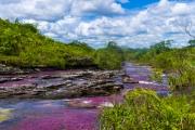 يصفونه بأنه نهر من الجنة.. هل سمعت عن نهر كانيو كريستالس ذي الألوان الخمسة؟