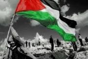 معاناة فلسطين.. إلى متى؟