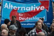 'الألمان الجدد'.. هل تنجح وسيلة 'حزب البديل' لكسب ودّ المهاجرين؟
