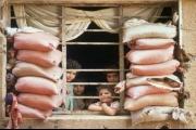 'أصوات من الماضي': اللبنانيون أيام الحرب