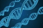 علماء يتوصلون 'للصندوق الأسود' لأصل مرض السرطان