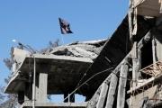 داعش تهديد حقيقي بعد شهر من إعلان انتهاء 'الخلافة'