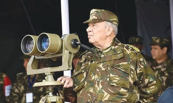 جون أفريك: هذه حسابات قايد صالح والجيش الجزائري
