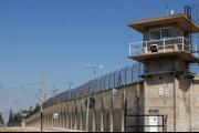 أسرى عراة..جرذان وبقّ.. 'السجون الإسرائيلية غير صالحة للبشر'