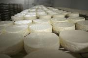 الأجبان يمكن أن تساعدك في التحكم بمستوى سكر الدم