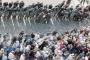 الحكومة اللبنانية بين غضب الشارع والضغوط الدولية