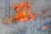 موجة الحر تضرب مصر وبلاد الشام.. والحرائق بالمئات