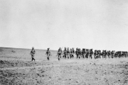 دروس التاريخ تُعلّمنا: استعراض القوة بين إيران وأمريكا