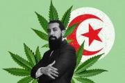 تونس ... 'حزب الورقة' الذي يريد تشريع زراعة الحشيش