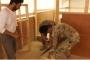 بالفيديو ... اللواء التاسع يساعد النازحين بترتيب خيمهم في عرسال