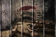 خلال ستة أشهر.. وفاة 700 معتقل بسجون النظام في حماة