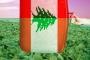 لبنان... إنقاذ تسوية متخيَّلة