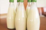 صرعة الأغذية النباتية .. لحوم وحليب من البازلاء الصفراء