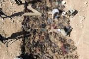 'أعدمهم نظام صدام'... اكتشاف مقبرة جماعية جديدة لأسرى كويتيين في العراق