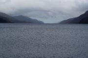 نُسجت حولها الأساطير.. علماء يقولون إن وحش بحيرة أسكتلندا «المظلمة» قد يكون مجرد «سمكة»