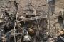 مقتل أول مدني في قصف جوي منذ بدء هدنة في شمال غرب سوريا