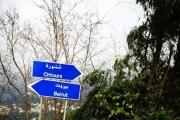 اختفاء قريب لزوجة الأسد في لبنان