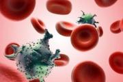 أين يختبئ فيروس الإيدز في الجسم؟ وهل هناك علاج قريب؟