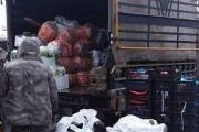 الجمارك تضبط كمية من الخضار السورية المهربة في صيدا