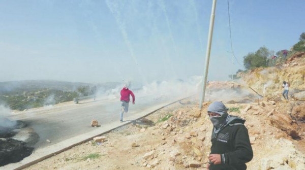 مستوطنون يهاجمون مزارعين فلسطينيين قرب رام الله