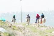 إسرائيل تسيطر على 95  بالمئة من أراضي الأغوار