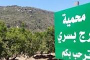 'حزب الله' يضغط على جنبلاط: 'سد بسري' مقابل 'الكوستابرافا'!