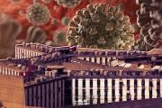 رومية: الإعدام بالكورونا.. أو العفو العام