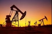 أسعار النفط تهوي بعد إصابة ترامب بكورونا