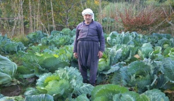 «حزب الله» يُواصل الإتجار بالمزارعين..و«حركة امل» تَسطو على «ساحة العلم»!
