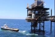 النفط يرتفع دولارا بفضل محادثات 'أوبك+'