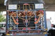 «الهلع» يرفع الطلب على الدجاج 300 بالمئة ... والعلف المدعوم نفِد