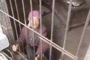 فيديو.. أبناء يحبسون أمهم المسنة في